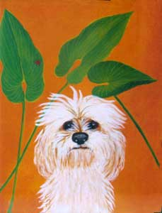 Pet Portrait by Karen Hudson